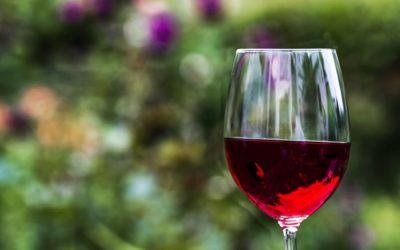 Cuatro buenas razones para tomar una copa de vino