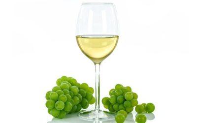 Tipos de vinos blancos